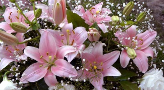 How to make and keep a bouquet of lilies