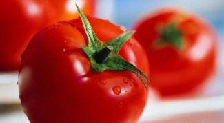 Какие семена томатов хорошие для Сибири