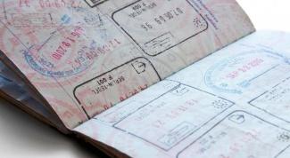 Какие документы нужны для поездки в Эстонию