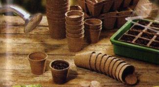 Как пользоваться торфяными горшочками