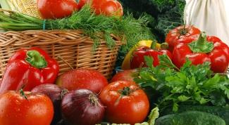 Овощеводство - выгодный бизнес?