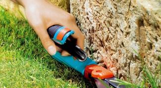 Садовый парикмахер: как выбрать инструмент для участка
