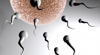Как выглядит  здоровая сперма