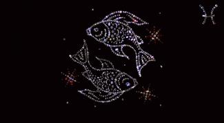 Гороскоп совместимости: какие знаки Зодиака подходят Рыбам