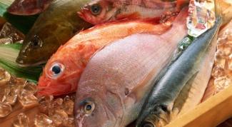 Какая рыба полезней всего