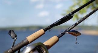 Все о рыбалке: выбираем отличный спиннинг
