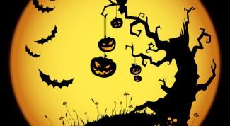 Как отмечают Хэллоуин в Америке