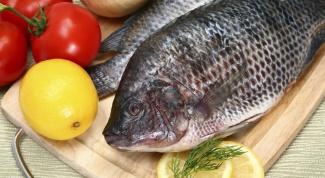 Все про рыбу как продукт питания