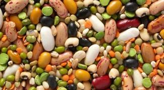 В каких растительных продуктах больше всего белка