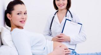 Каких врачей проходят при беременности