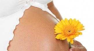 Когда и как болит грудь при беременности