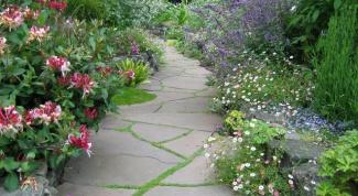 Как оформить садовые дорожки: пестро и привлекательно