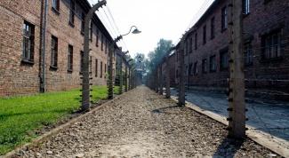 Что такое Освенцим