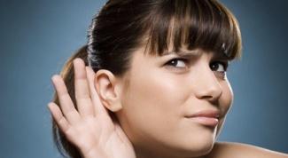 Какие функции выполняют органы слуха