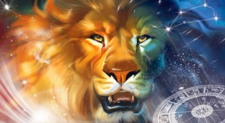 What women like men to Lions