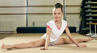 What are the different types of gymnastics