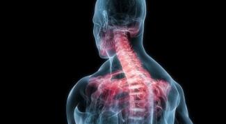 Какие кости образуют плечевой пояс