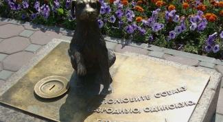 Какие памятники животным существуют в России