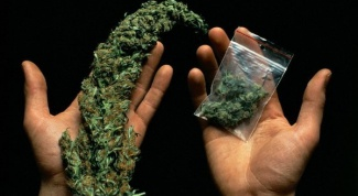 Could a common blood test to determine the presence of marijuana