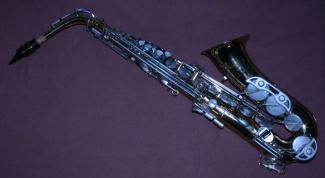 Где купить и сколько стоит ученический саксофон