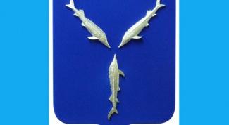 Какая рыба и почему изображена на гербе Саратова