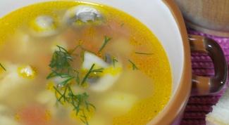 Грибной суп со свининой