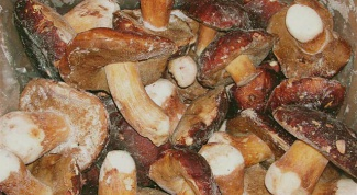 How to freeze mushrooms for the winter