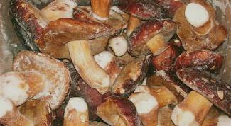 Как правильно заморозить грибы на зиму