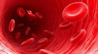 Как разжижать кровь при беременности