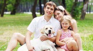 Как изменить моральный климат в семье