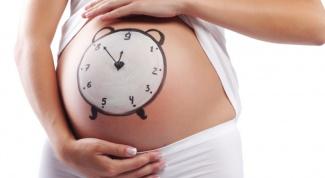 Как рассчитать срок своей беременности в 2018 году