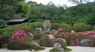 Как сделать сад камней самому