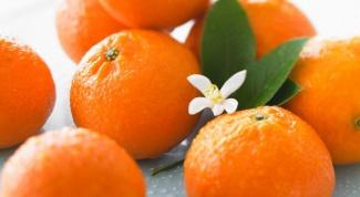 Что за фрукт клементин