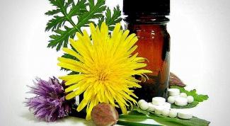 Какие болезни можно вылечить гомеопатией