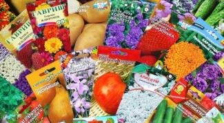 Как сеять семена цветов