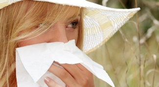 What herb helps with allergies