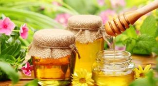 Какой мед помогает от простуды