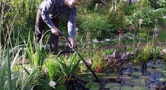 Как следят за чистотой водоемов
