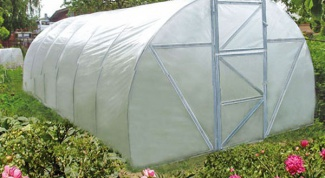 How to glue film for greenhouses