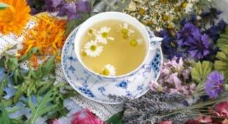 Какие собирать травы для чая