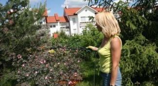 Как ухаживать за садом