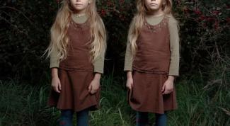 Как к клонированию относится мировая общественность
