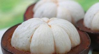 Что такое мангустин
