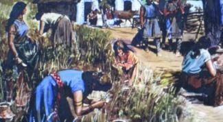 Как жили древние племена