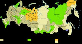 Сколько субъектов насчитывается в РФ