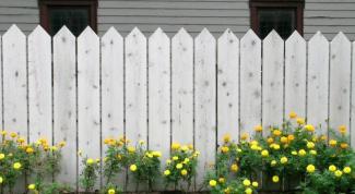 Как построить деревянный забор на дачном участке