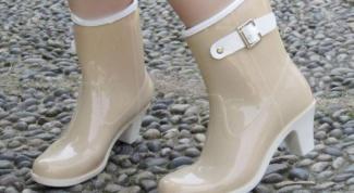 Где в интернете можно купить стильные резиновые сапоги
