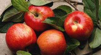 Как сделать яблоки из папье-маше