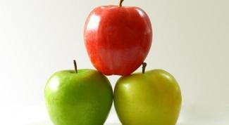 Лучший сорт летних яблок