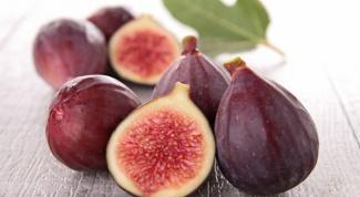 Инжир: полезные свойства винной ягоды